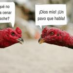 Proponer planes en español