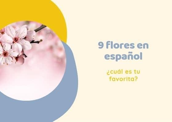 9 flores en español